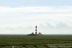 4007 Lighthouse Westerhever